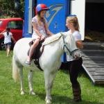 madison millard pony